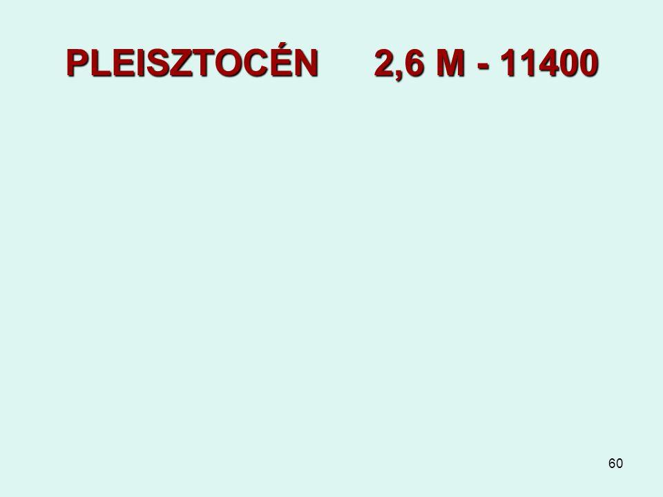 60 PLEISZTOCÉN 2,6 M - 11400