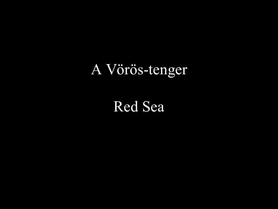 A Vörös-tenger Red Sea
