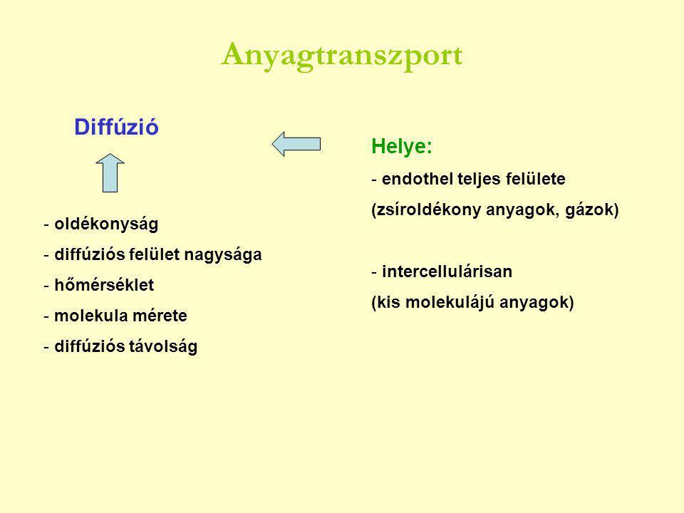 Anyagtranszport - oldékonyság - diffúziós felület nagysága - hőmérséklet - molekula mérete - diffúziós távolság Diffúzió Helye: - endothel teljes felülete (zsíroldékony anyagok, gázok) - intercellulárisan (kis molekulájú anyagok)
