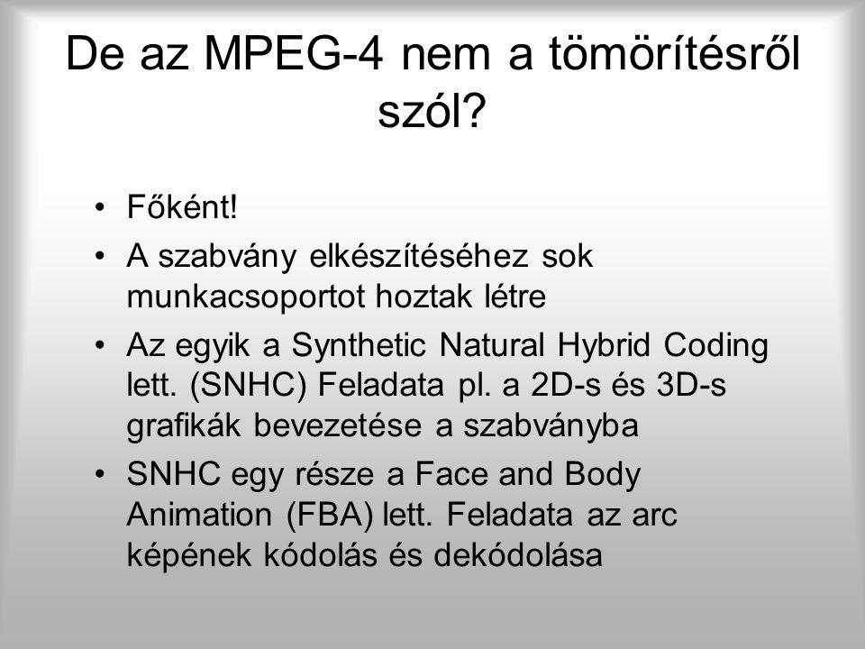 FA – informatikai megközelítés KutatóMűvész  MPEG-4