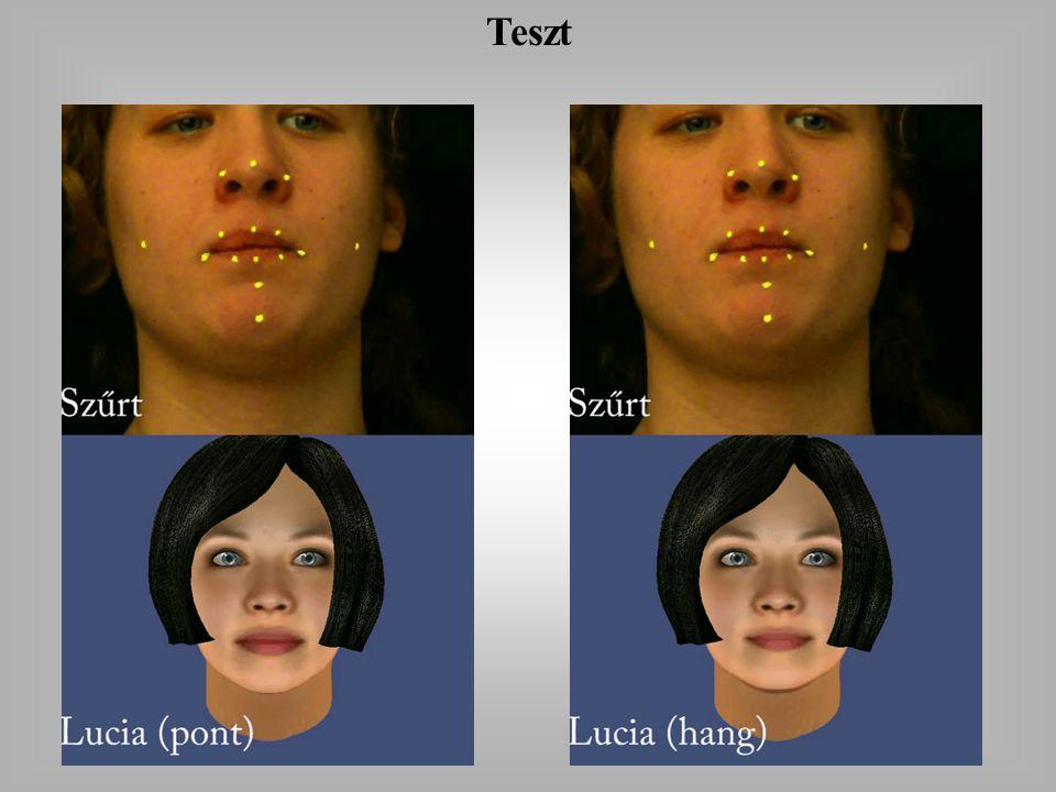 Log to Lucia konverzió Log mátrix MPEG-4 szerinti megfeleltetés Skálázás és irány Lucia Normálás (referencia frame) Medián szűrő