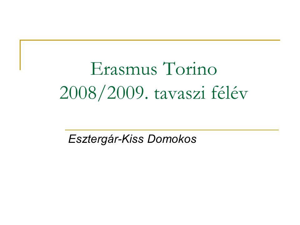 Erasmus Torino 2008/2009. tavaszi félév Esztergár-Kiss Domokos