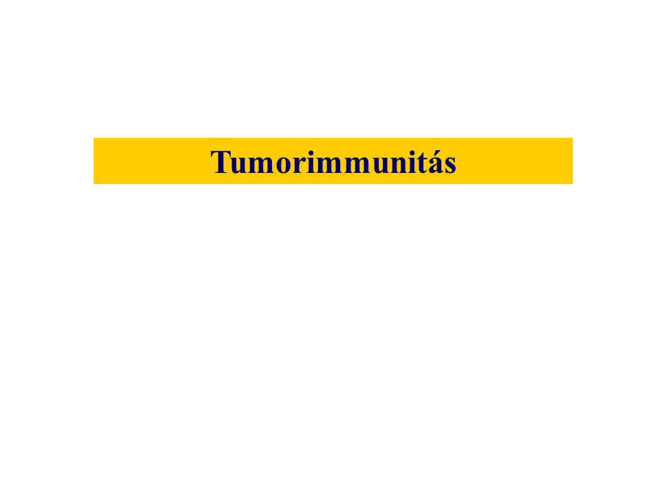 tumor FasL KIR vedlés TGF-  fokozó antitestek TNF-  CTL NK O 2 gyökök enzimek TNF-  makrofág Tumor túlélési mechanizmusokAnti-tumor immune response 1 3 2 1 4 3 2 5 3 MHC hiánya Fas FasL