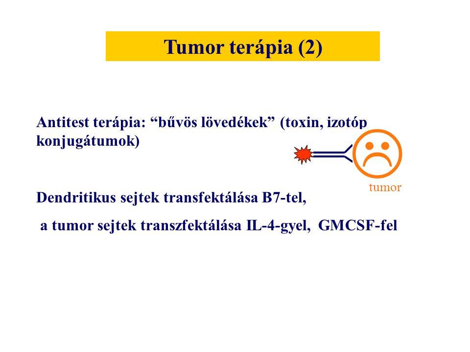"""Antitest terápia: """"bűvös lövedékek"""" (toxin, izotóp konjugátumok) Dendritikus sejtek transfektálása B7-tel, a tumor sejtek transzfektálása IL-4-gyel, G"""