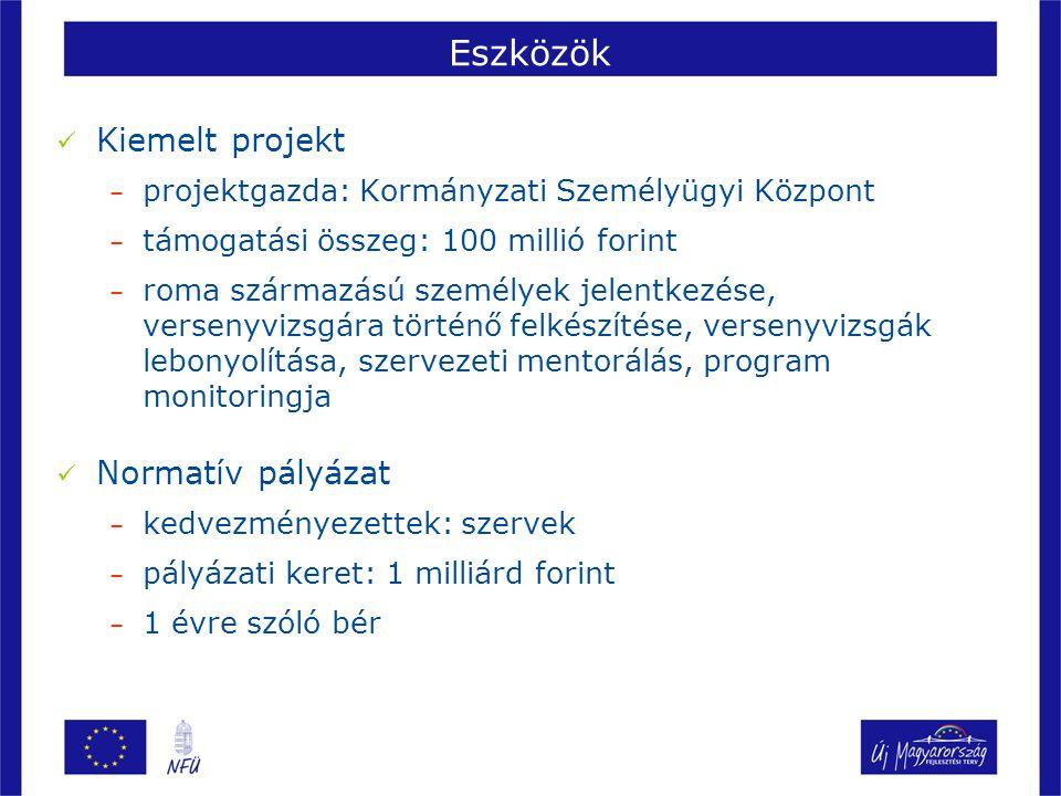 Eszközök Kiemelt projekt – projektgazda: Kormányzati Személyügyi Központ – támogatási összeg: 100 millió forint – roma származású személyek jelentkezése, versenyvizsgára történő felkészítése, versenyvizsgák lebonyolítása, szervezeti mentorálás, program monitoringja Normatív pályázat – kedvezményezettek: szervek – pályázati keret: 1 milliárd forint – 1 évre szóló bér