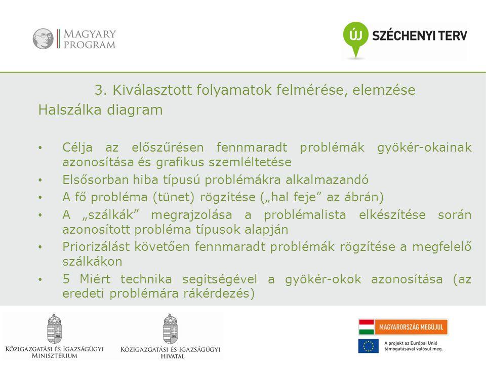 3. Kiválasztott folyamatok felmérése, elemzése Halszálka diagram Célja az előszűrésen fennmaradt problémák gyökér-okainak azonosítása és grafikus szem