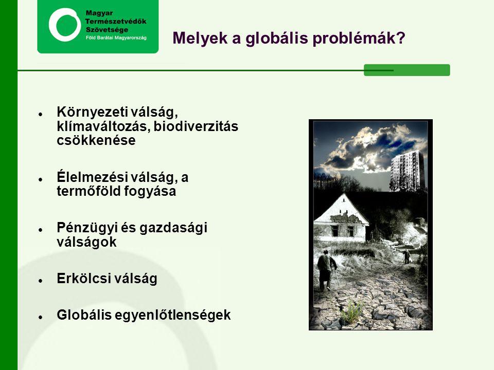 Melyek a globális problémák? Környezeti válság, klímaváltozás, biodiverzitás csökkenése Élelmezési válság, a termőföld fogyása Pénzügyi és gazdasági v