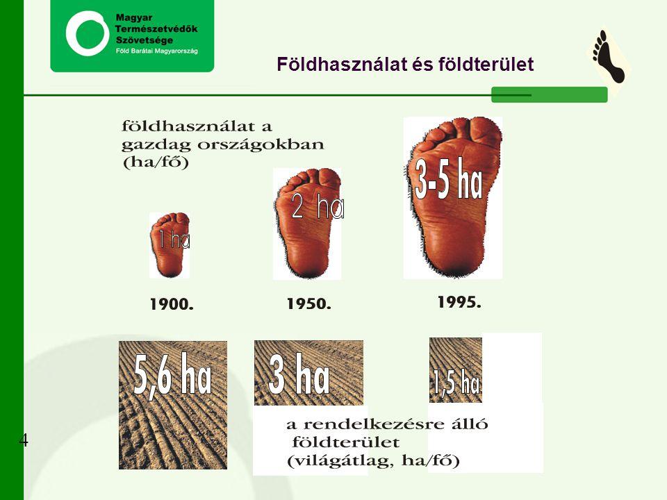 Földhasználat és földterület 4