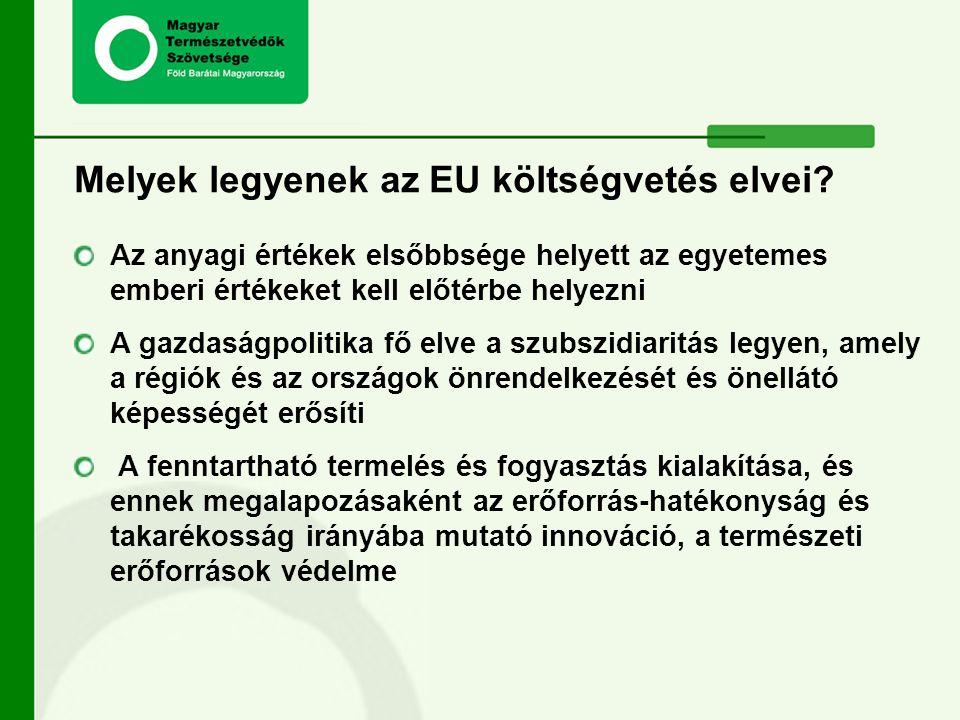 Melyek legyenek az EU költségvetés elvei? Az anyagi értékek elsőbbsége helyett az egyetemes emberi értékeket kell előtérbe helyezni A gazdaságpolitika