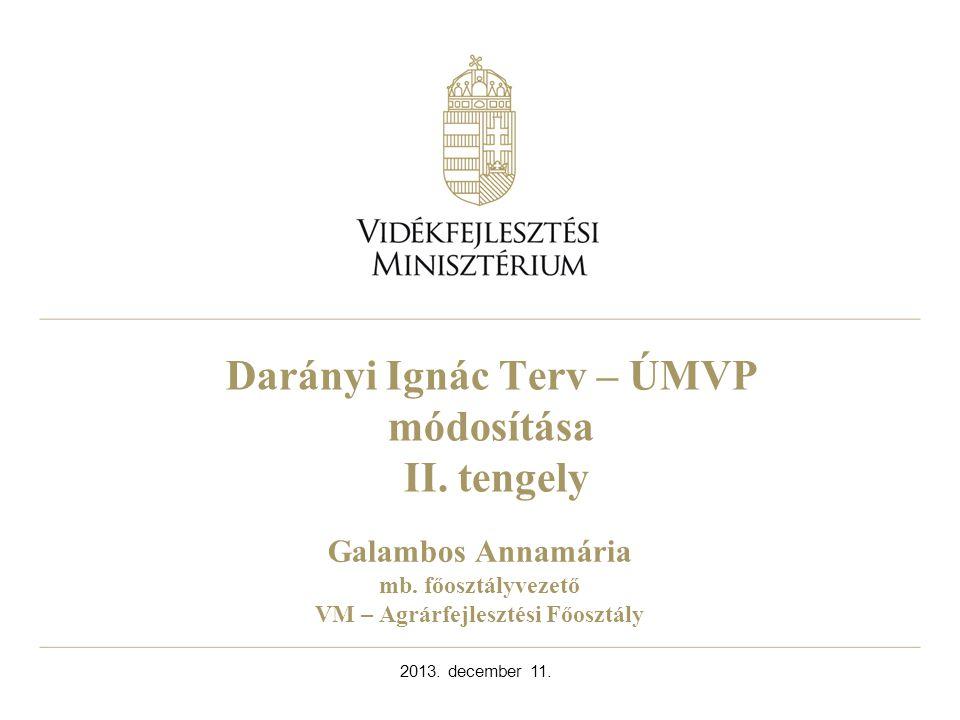 Darányi Ignác Terv – ÚMVP módosítása II. tengely 2013.