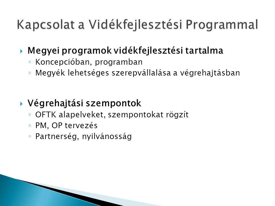  Megyei programok vidékfejlesztési tartalma ◦ Koncepcióban, programban ◦ Megyék lehetséges szerepvállalása a végrehajtásban  Végrehajtási szempontok