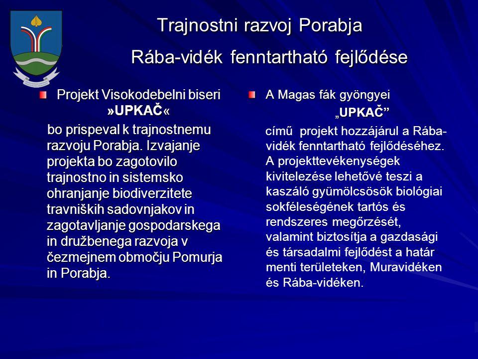 Trajnostni razvoj Porabja Rába-vidék fenntartható fejlődése Trajnostni razvoj Porabja Rába-vidék fenntartható fejlődése Projekt Visokodebelni biseri »