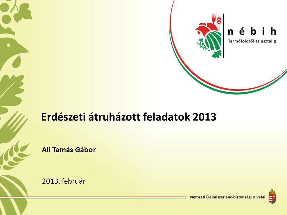 Erdészeti átruházott feladatok 2013 Ali Tamás Gábor 2013. február