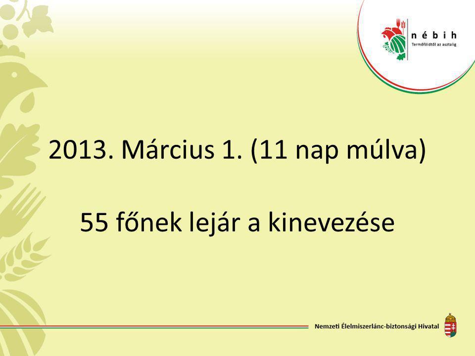 2013. Március 1. (11 nap múlva) 55 főnek lejár a kinevezése