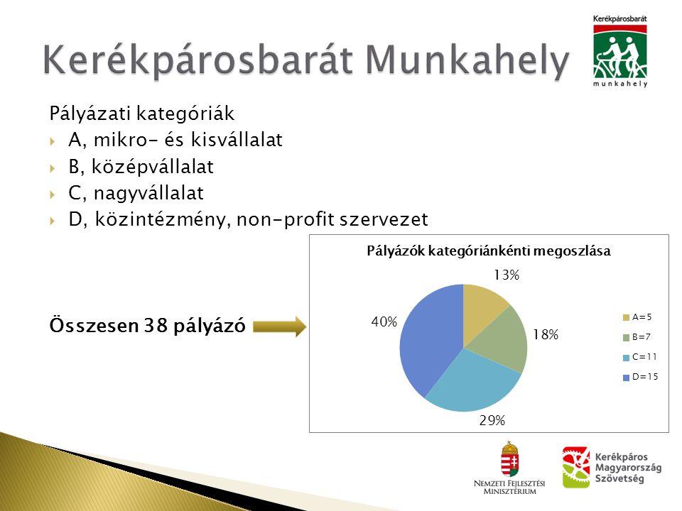 Pályázati kategóriák  A, mikro- és kisvállalat  B, középvállalat  C, nagyvállalat  D, közintézmény, non-profit szervezet Összesen 38 pályázó