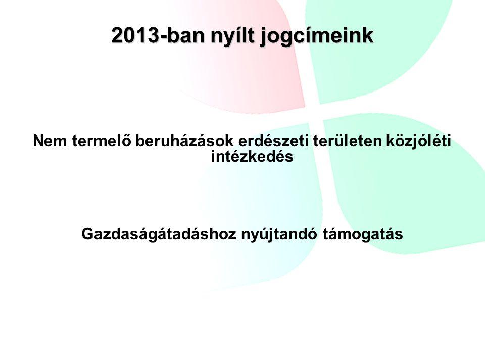 2013-ban nyílt jogcímeink Nem termelő beruházások erdészeti területen közjóléti intézkedés Gazdaságátadáshoz nyújtandó támogatás