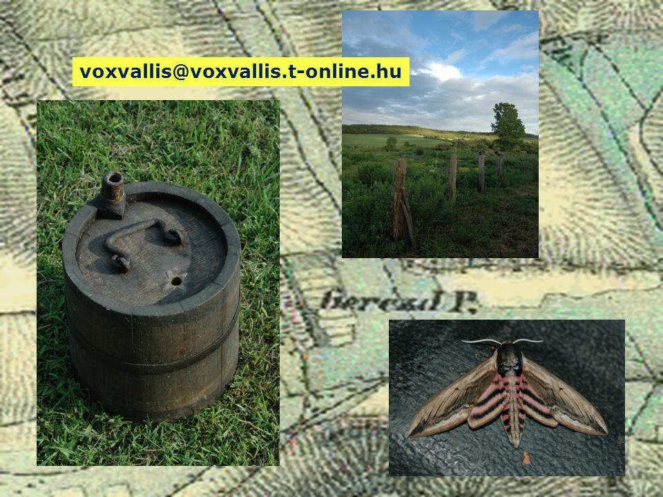 voxvallis@voxvallis.t-online.hu
