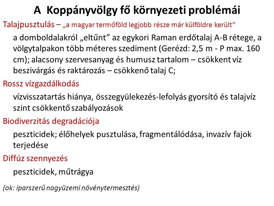 """A Koppányvölgy fő környezeti problémái Talajpusztulás – """"a magyar termőföld legjobb része már külföldre került a domboldalakról """"eltűnt az egykori Raman erdőtalaj A-B rétege, a völgytalpakon több méteres szediment (Gerézd: 2,5 m - P max."""