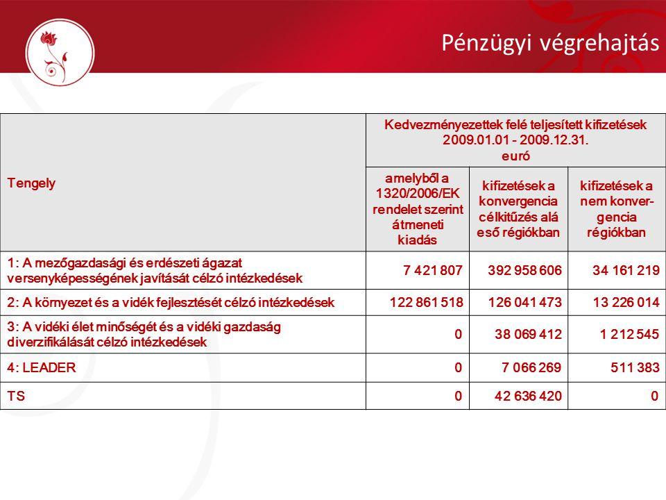 Tengely Kedvezményezettek felé teljesített kifizetések 2009.01.01 - 2009.12.31. euró amelyből a 1320/2006/EK rendelet szerint átmeneti kiadás kifizeté