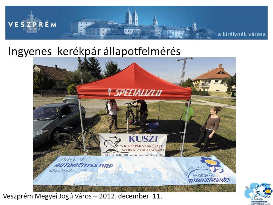 Veszprém Megyei Jogú Város – 2012. december 11. Ingyenes kerékpár állapotfelmérés