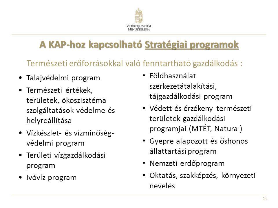 24 A KAP-hoz kapcsolható Stratégiai programok Talajvédelmi program Természeti értékek, területek, ökoszisztéma szolgáltatások védelme és helyreállítása Vízkészlet- és vízminőség- védelmi program Területi vízgazdálkodási program Ivóvíz program Természeti erőforrásokkal való fenntartható gazdálkodás : Földhasználat szerkezetátalakítási, tájgazdálkodási program Védett és érzékeny természeti területek gazdálkodási programjai (MTÉT, Natura ) Gyepre alapozott és őshonos állattartási program Nemzeti erdőprogram Oktatás, szakképzés, környezeti nevelés