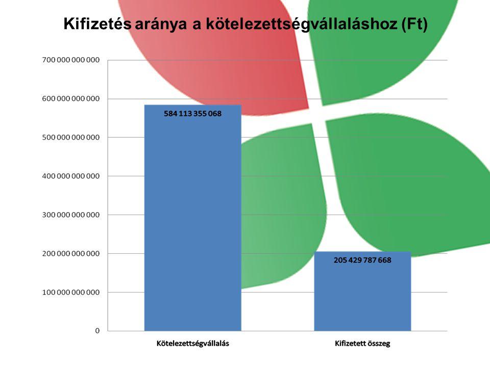 Kifizetés aránya a kötelezettségvállaláshoz (Ft)