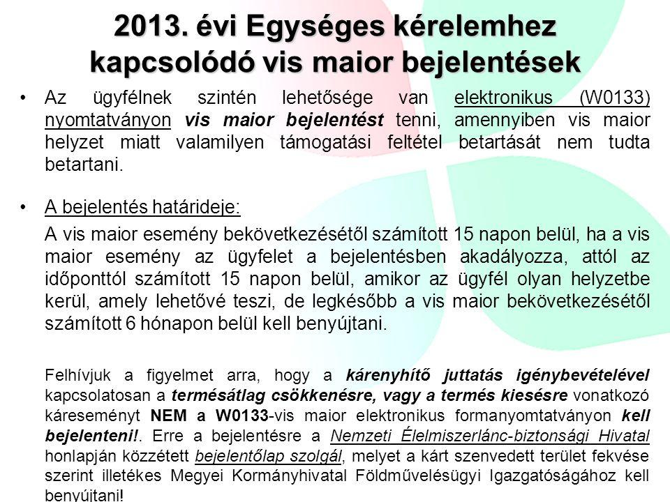 2013. évi Egységes kérelemhez kapcsolódó vis maior bejelentések Az ügyfélnek szintén lehetősége van elektronikus (W0133) nyomtatványon vis maior bejel