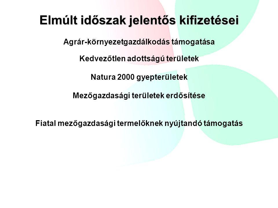 Elmúlt időszak jelentős kifizetései Agrár-környezetgazdálkodás támogatása Kedvezőtlen adottságú területek Natura 2000 gyepterületek Mezőgazdasági területek erdősítése Fiatal mezőgazdasági termelőknek nyújtandó támogatás