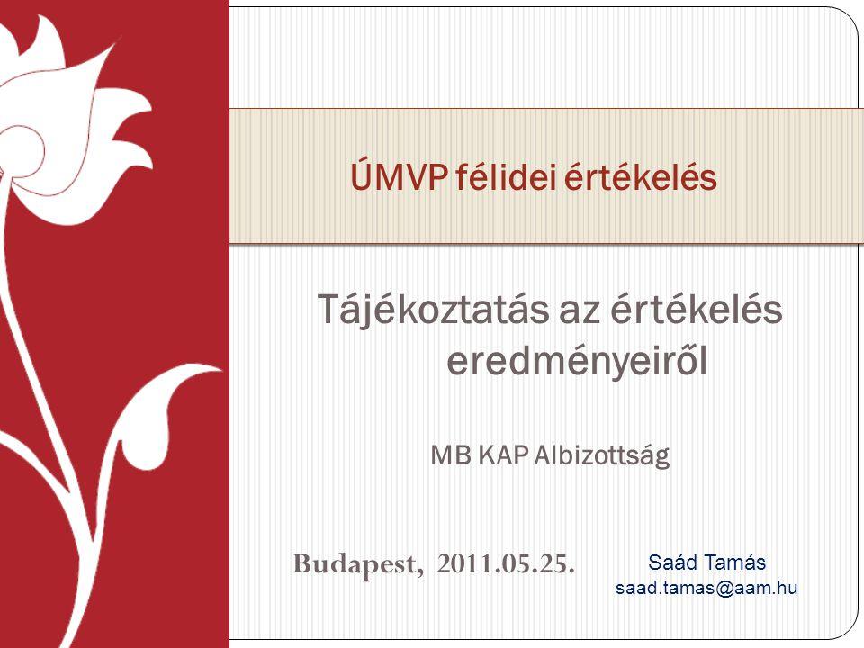 Tájékoztatás az értékelés eredményeiről MB KAP Albizottság Budapest, 2011.05.25.