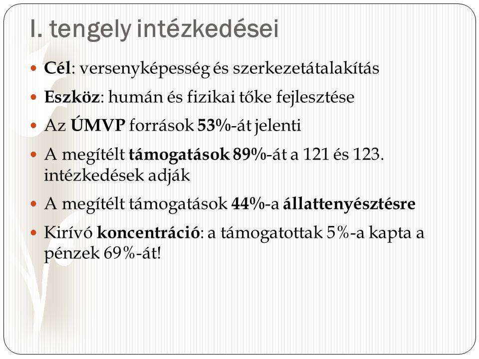 I. tengely intézkedései Cél : versenyképesség és szerkezetátalakítás Eszköz : humán és fizikai tőke fejlesztése Az ÚMVP források 53% -át jelenti A meg