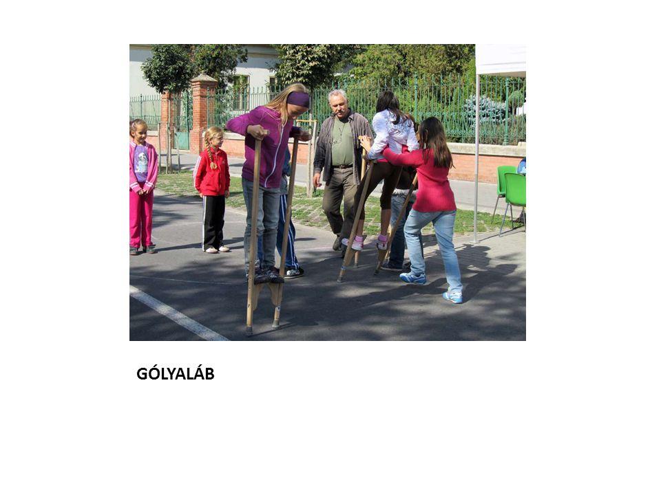 GÓLYALÁB