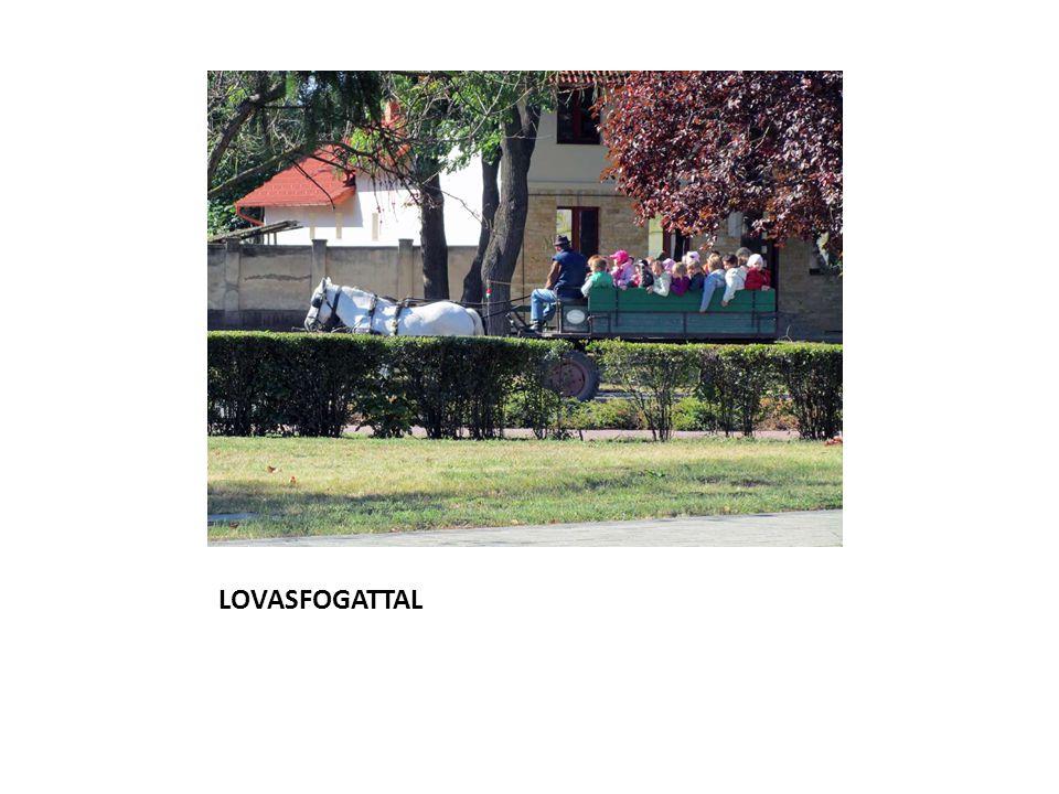 LOVASFOGATTAL