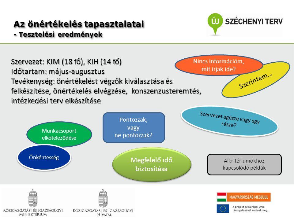-Vezetői elköteleződés -Tervezés, szervezés -Kommunikáció -Szerepek, munkaszervezés -Felkészítés -Időtényező -Eredmények ellenőrzése, értékelése Sikertényező vagy buktató?
