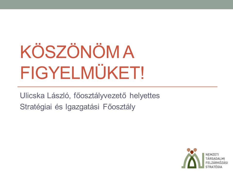 KÖSZÖNÖM A FIGYELMÜKET! Ulicska László, főosztályvezető helyettes Stratégiai és Igazgatási Főosztály