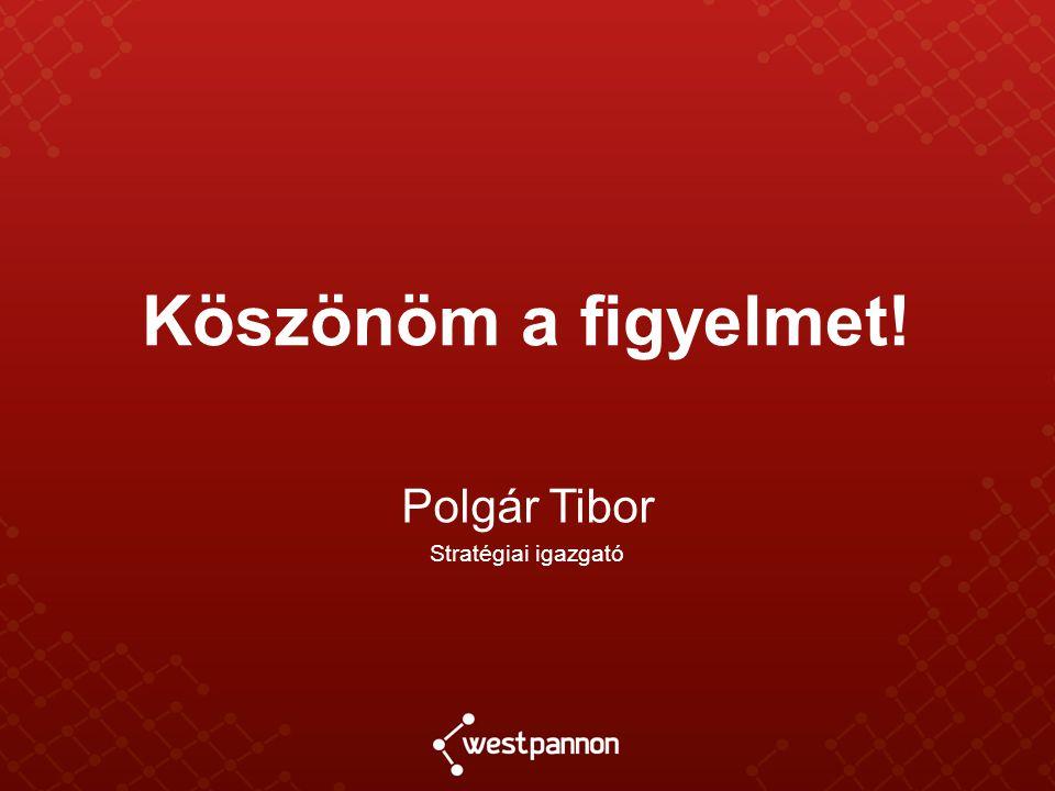 Köszönöm a figyelmet! Polgár Tibor Stratégiai igazgató