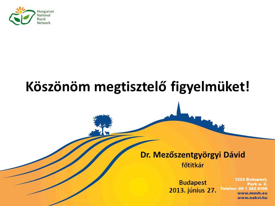 Köszönöm megtisztelő figyelmüket! Dr. Mezőszentgyörgyi Dávid főtitkár Budapest 2013. június 27.