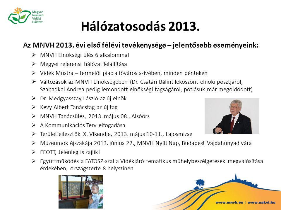 Hálózatosodás 2013. Az MNVH 2013.