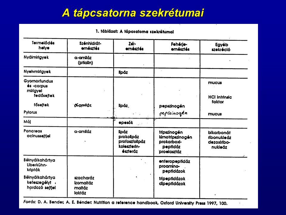 Jelentősebb gastrointestinalis hormonok