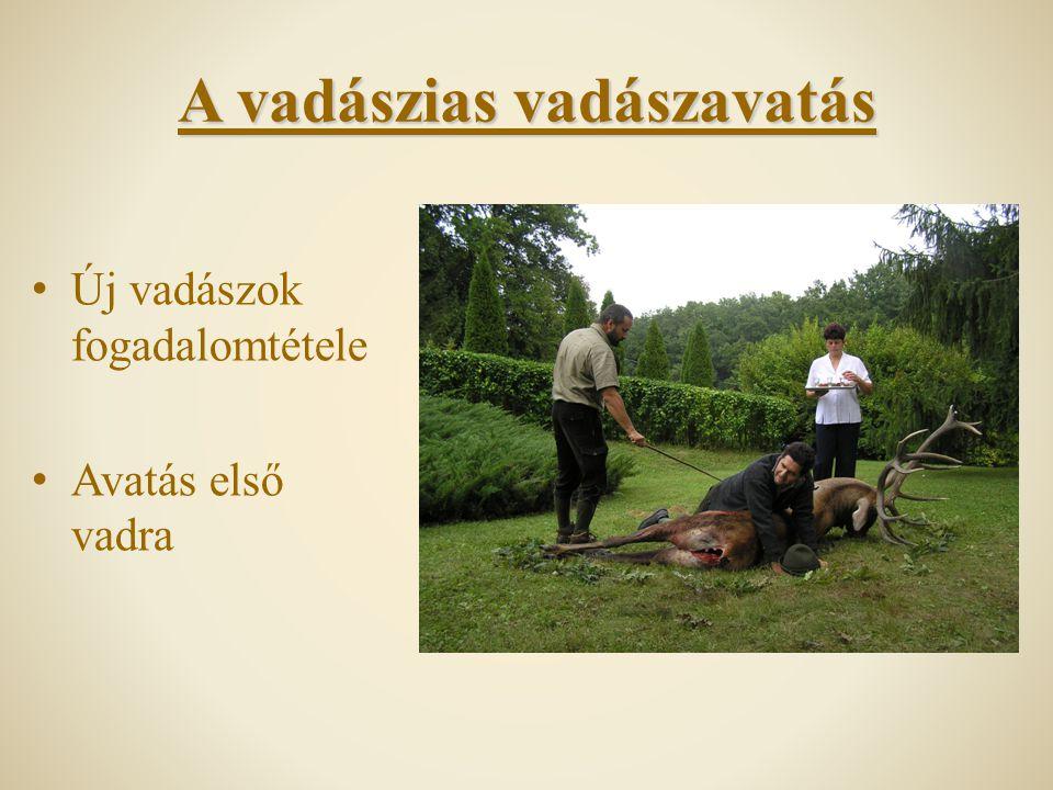A vadászias vadászavatás Új vadászok fogadalomtétele Avatás első vadra