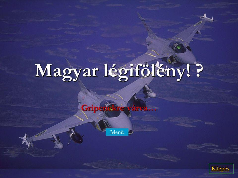 Magyar légifölény! Gripenekre várva… Menü Menü Kilépés