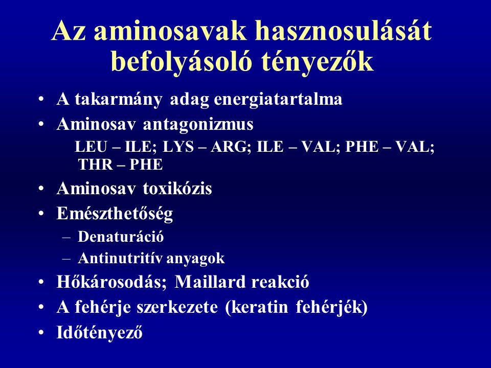 Az aminosavak hasznosulását befolyásoló tényezők A takarmány adag energiatartalma Aminosav antagonizmus LEU – ILE; LYS – ARG; ILE – VAL; PHE – VAL; TH