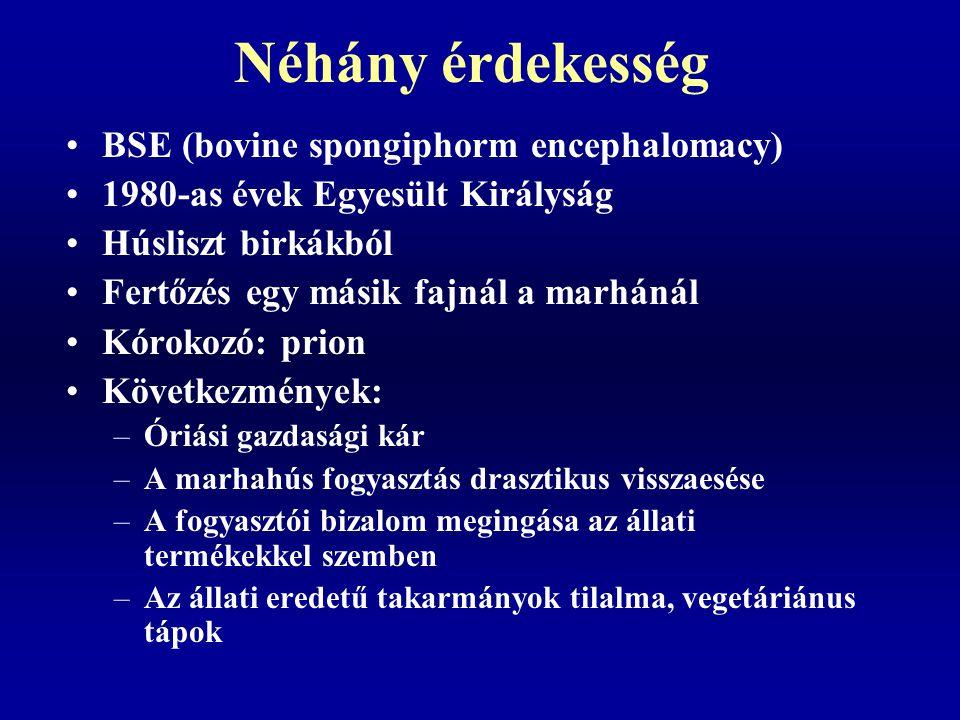 Néhány érdekesség BSE (bovine spongiphorm encephalomacy) 1980-as évek Egyesült Királyság Húsliszt birkákból Fertőzés egy másik fajnál a marhánál Kórok