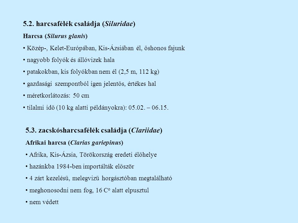 5.2. harcsafélék családja (Siluridae) Harcsa (Silurus glanis) Közép-, Kelet-Európában, Kis-Ázsiában él, őshonos fajunk nagyobb folyók és állóvizek hal
