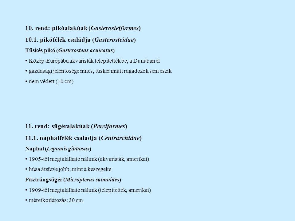 10. rend: pikóalakúak (Gasterosteiformes) 10.1. pikófélék családja (Gasterosteidae) Tüskés pikó (Gasterosteus aculeatus) Közép-Európába akvaristák tel
