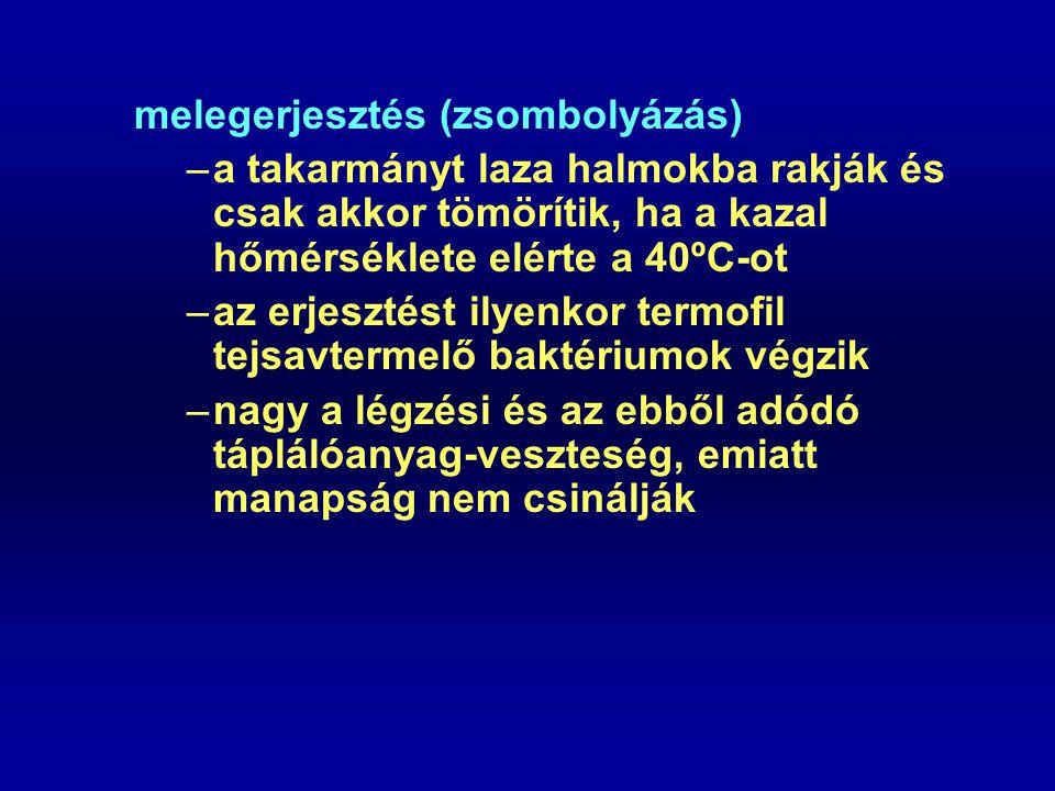 melegerjesztés (zsombolyázás) –a takarmányt laza halmokba rakják és csak akkor tömörítik, ha a kazal hőmérséklete elérte a 40ºC-ot –az erjesztést ilyenkor termofil tejsavtermelő baktériumok végzik –nagy a légzési és az ebből adódó táplálóanyag-veszteség, emiatt manapság nem csinálják