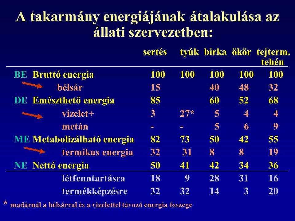 táplálóanyagg/kg sz.a. em. együtt ható faktor nyersfehérje127,50,60= 76,5 nyerszsír50,10,602,25= 67,6 nyersrost319,30,65= 207,5 Nmka396,10,55= 217,8 T