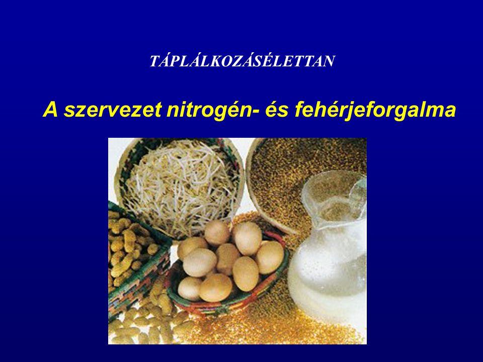 Fehérjeszükséglet Ajánlott fehérjebevitel: - Egészséges felnőttek: - vegyes táplálkozás: 0,8 g/kg/nap - idősek: 1,0-1,1 g/kg/nap - Terhesség: - fehérjeszükséglet folyamatosan növekszik + 10 g/nap többletbevitel javasolható - Szoptatás - a kiválasztott tej mennyiségétől és összetételétől függ - anyatejben: 1,3-1,15 g/100 ml fehérje - maximális tejelválasztás: 850 ml/nap - szükséglet: 9,8 g/nap - bevitel: +17,5 g/nap komplett fehérje - vegyes táplálkozásnál: +20 g/nap
