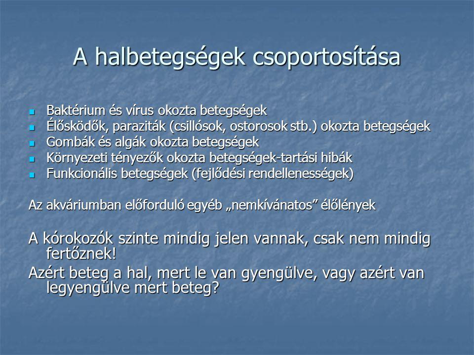 A halbetegségek csoportosítása Baktérium és vírus okozta betegségek Baktérium és vírus okozta betegségek Élősködők, paraziták (csillósok, ostorosok st