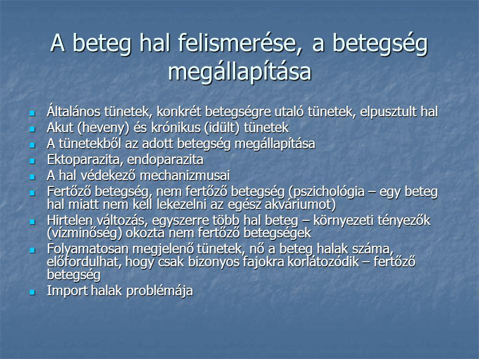A beteg hal felismerése, a betegség megállapítása Általános tünetek, konkrét betegségre utaló tünetek, elpusztult hal Általános tünetek, konkrét beteg