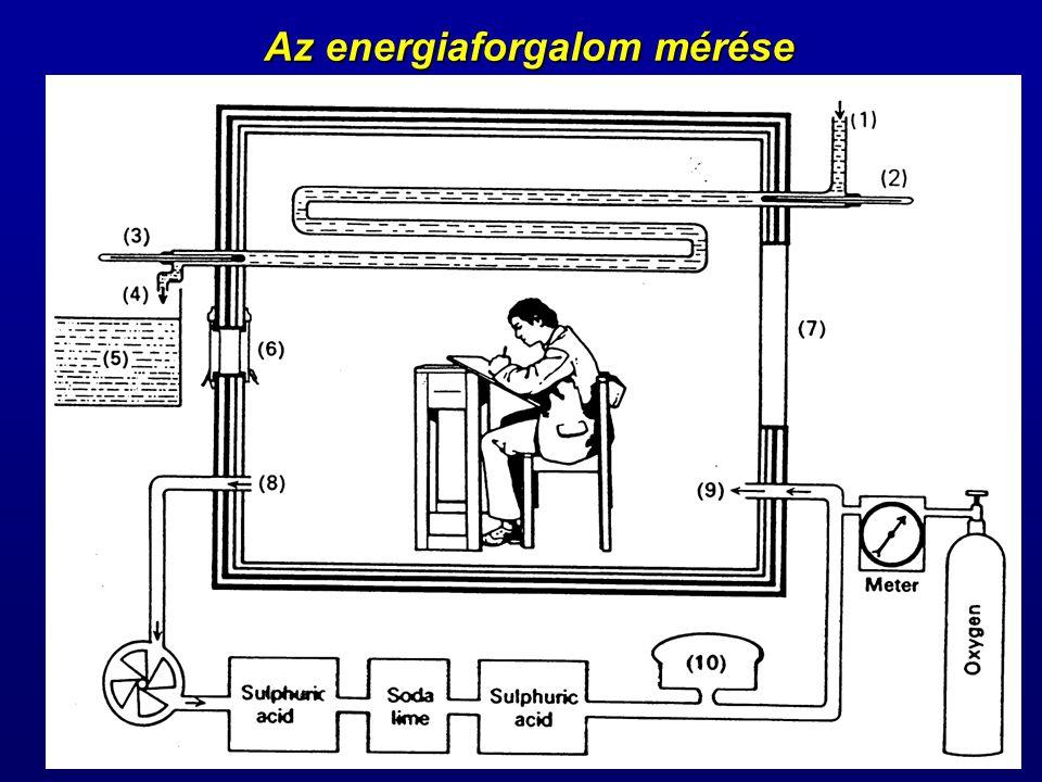 Az energiaforgalom mérése